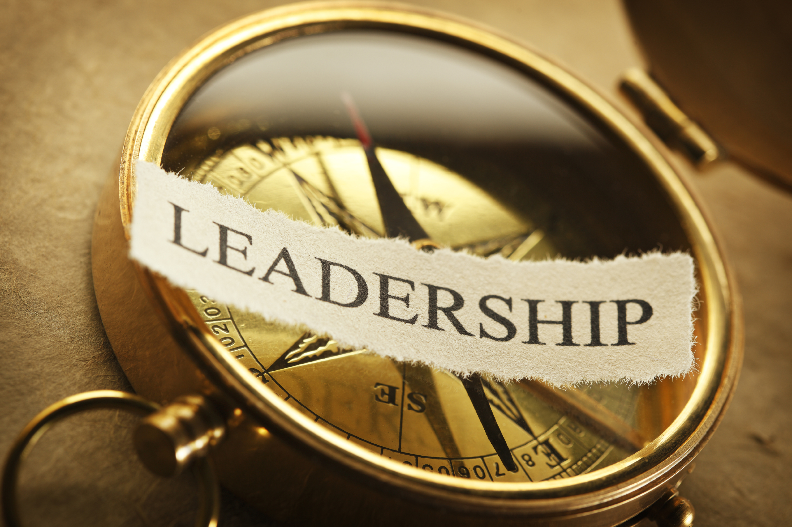 the need for leadership